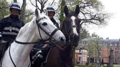 Belgische en Nederlandse politie betrappen samen drugdealers