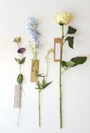 Een bloem als symbool voor wie graag ook bij de uitvaart aanwezig had willen zijn.