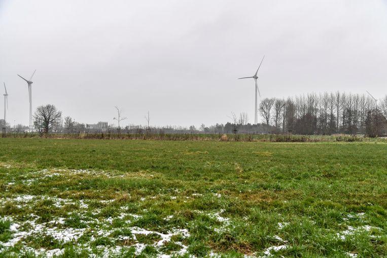 """""""Met vier windmolens aan het Hoogveld is het verzadigingspunt in de omgeving van het industrieterrein bereikt"""", vindt de stad."""