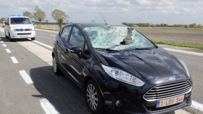 Voetstuk van verkeersbord plant zich in voorruit: vrouw krijgt glas in ogen, man stukje vinger kwijt
