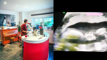 SHOWBITS. Sam De Bruyn toont z'n interieur en welke zangeres deelt haar echografie?