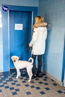 Alphense senioren aan huis gekluisterd door defecte lift: 'Om de haverklap is dat ding kapot'