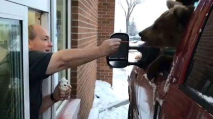 Dierentuin trakteert bruine beer op ijsje in drive-in, justitie kan er niet mee lachen