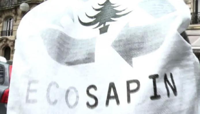 Een ecologisch verantwoorde kerstboom met eco-label verpakt in een ecozak die net als de natuurboom ook weer gerecycled kan worden.