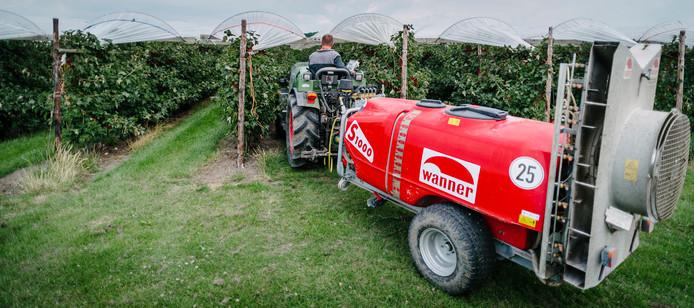 Anco van Garderen rijdt met een trekker een kleine sproeiwagen tussen de fruitplanten