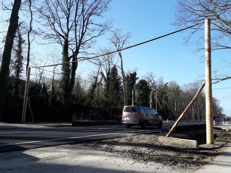 De eekhoornbruggen in Grobbendonk lijken geen succes omdat de bruggen niet rechtstreeks verbonden zijn met de bomen.