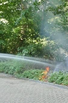 Oeps! Kinderen steken per ongeluk bosjes in brand in Dongen