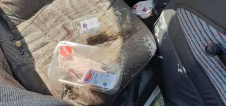 Vrouw (86) knalt tegen boom in Hengelo, politie haalt nieuwe paasboodschappen