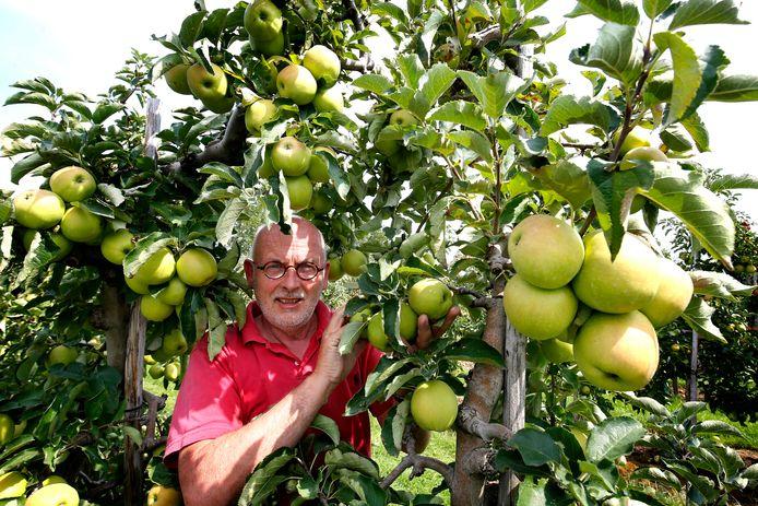 Fruitteler Jan van Buuren uit Schoonrewoerd in zijn appelboomgaard.