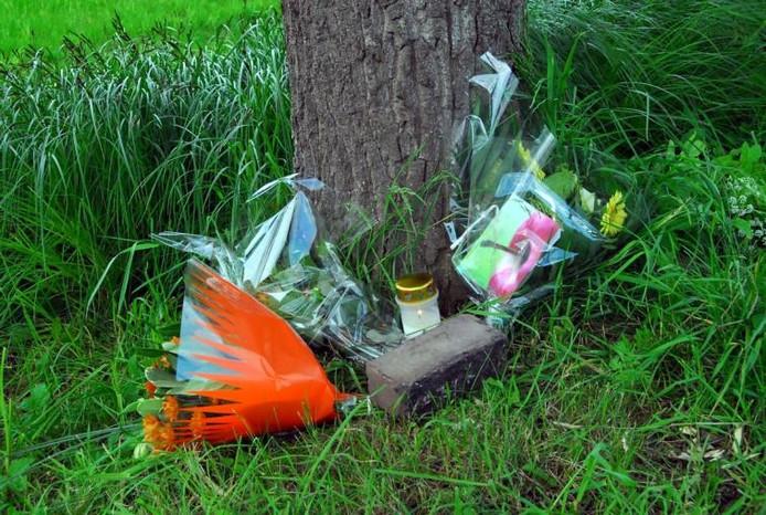 Bloemen markeren in 2009 de plek van het dodelijke ongeluk.