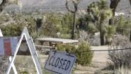 """Ook gewone Amerikanen ondervinden gevolgen shutdown aan den lijve: """"We hebben het moeilijk"""""""