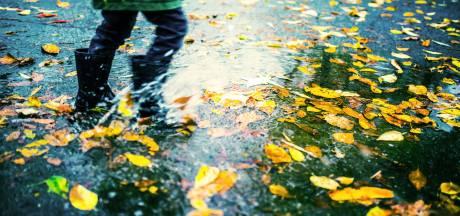 Eerste hulp bij activiteiten in de herfstvakantie: dit is er te doen in Twente