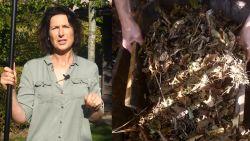 VIDEO. Slimme trucs om snel komaf te maken met herfstbladeren in je tuin