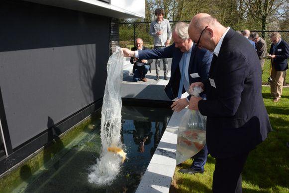Voorzitter Boudewijn Vlegels en burgemeester Marc Van de Vijver mochten bij de opening een koi uitzetten.