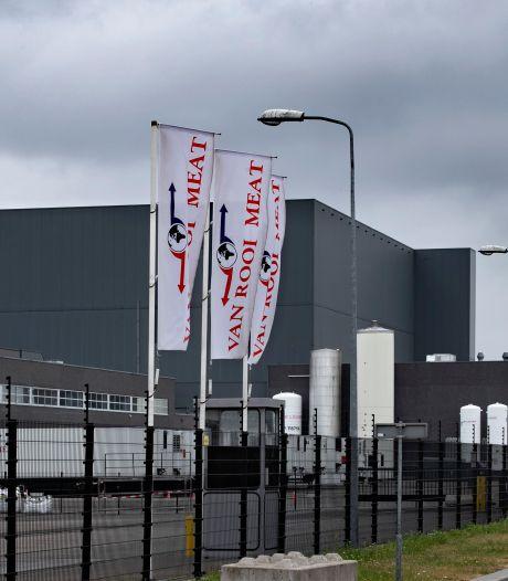 Sluiting slachterij Van Rooi Meat in Helmond zorgt voor onrust in de varkenshouderij