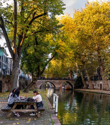 De vijf mooiste plekken om van de herfst te genieten in de provincie Utrecht