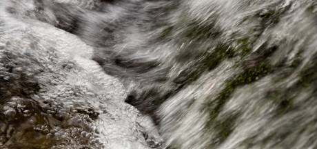 Extreem veel ammonium in de Aa, waterzuivering gecrasht na lek bij mestverwerker