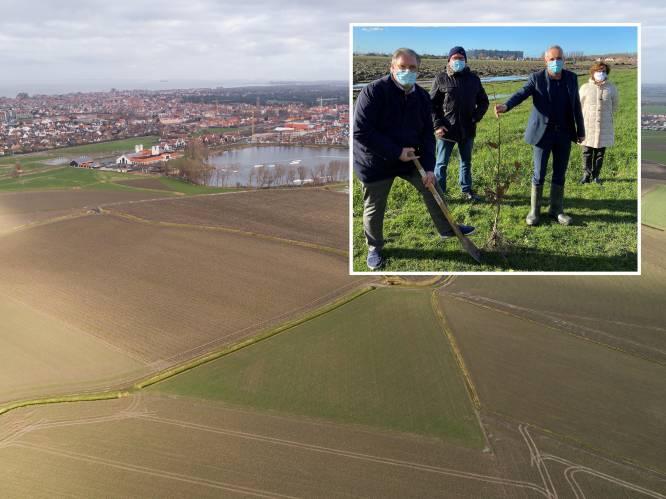 """Alleen nieuwbouw aan de kust? Nee hoor, Knokke-Heist betaalt 7 miljoen euro voor volledig nieuw bos: """"We moeten aan de toekomst beginnen denken"""""""