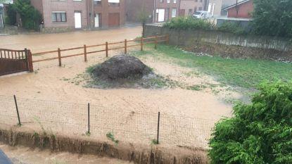 HITTEBLOG. Felle onweersbuien veroorzaken overlast in Vlaanderen - KMI verlengt code rood voor Antwerpen en Limburg