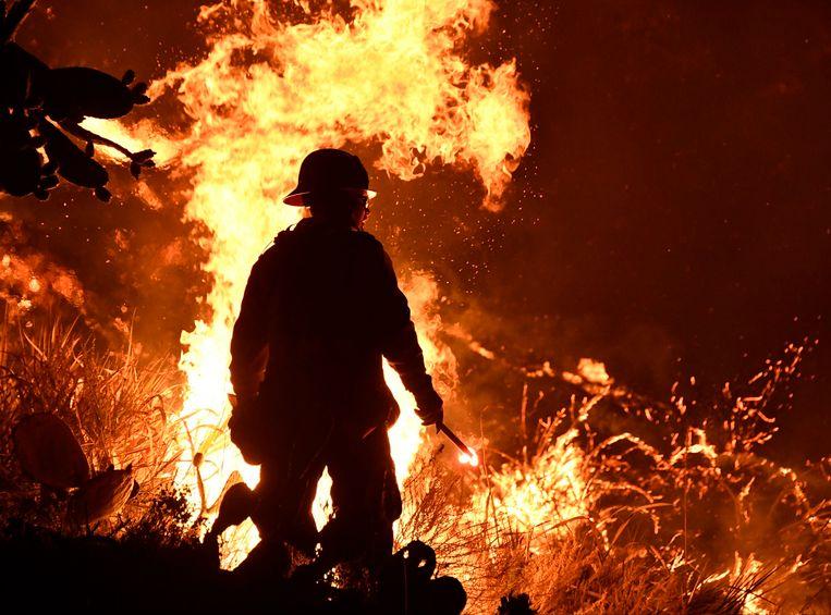 De branden woeden momenteel in de heuvels boven de stad Ventura, zo'n 80 kilometer ten noordwesten van Los Angeles.