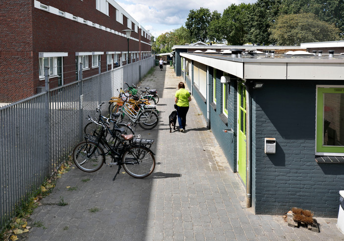 dierenasiel Eindhoven