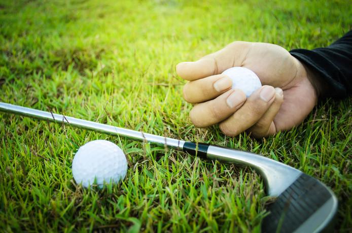 Vandalen zouden met golfballen onder meer ruiten vernielen.
