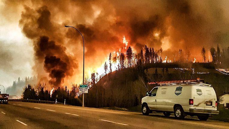 De brand is de afgelopen dagen enorm gegroeid, inmiddels is 85.000 hectare getroffen. Beeld epa