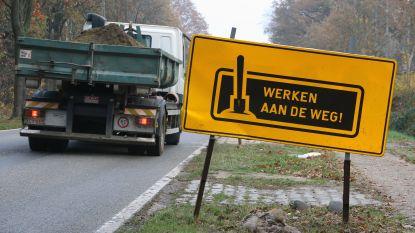Andere omleiding voor vrachtverkeer door wegenwerken