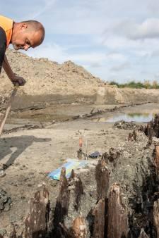 Blootgelegde houten kade in Goes is volgens archeologen een unieke vondst