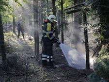 Klein bosbrandje in bossen bij Dorst, brand mogelijk aangestoken