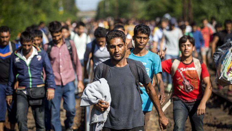 Migranten lopen over de rails in Hongarije. Ze zijn op weg naar Oostenrijk en hopen van daar uit Duitsland te bereiken. Beeld epa