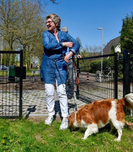 Honden kunnen straks lekker uitrazen én poepen aan de Borredreef
