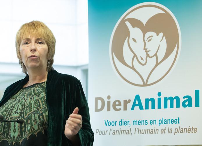 DierAnimal s'inscrit dans un mouvement mondial en expansion. Il s'agira du 19e parti animaliste sur la planète. Aux Pays-Bas et au Portugal, des partis homologues disposent de sièges parlementaires.