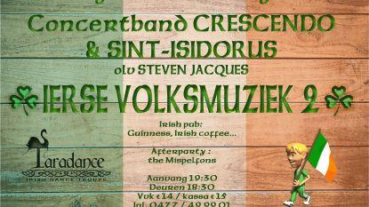 Ierse volksmuziek met zang en dans