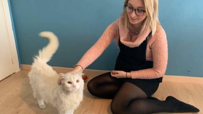 """Baasje Amy (29) dolgelukkig nu vermiste kat Bagheera na 1,5 jaar opduikt: """"Ze herkent me nog, na al die tijd!"""""""