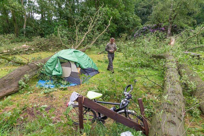 Beeld van de ravage nadat begin juni een valwind tientallen bomen omver blies.