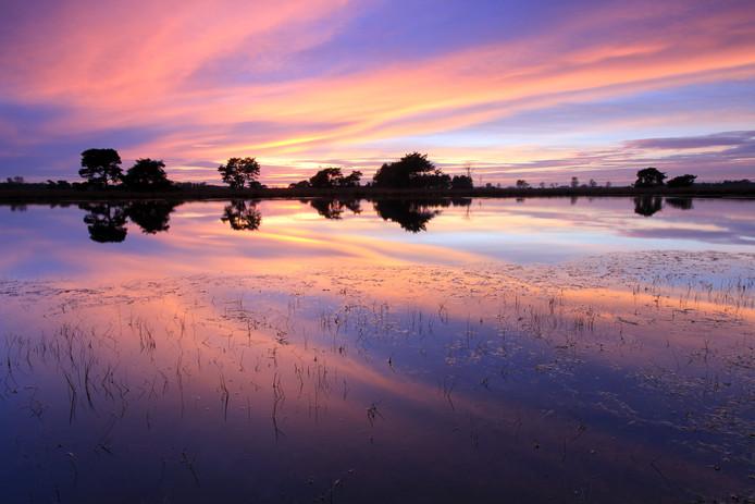 Patrick Brouwers uit Lieshout maakte deze fraaie foto van een zonsondergang op de Strabrechtse Heide.