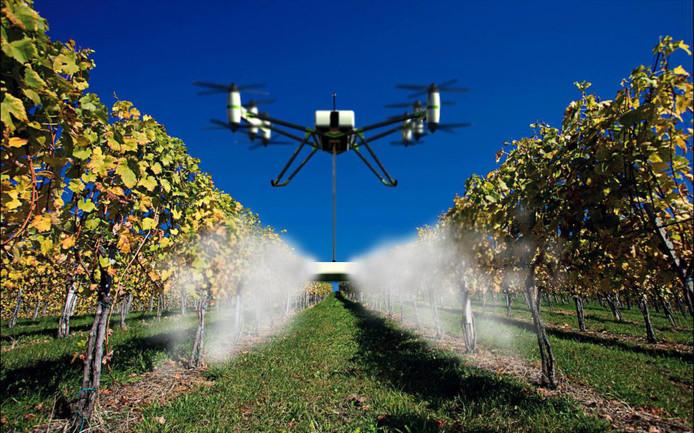 Drones worden steeds vaker ingezet door boeren om gewassen te inspecteren of (zoals op deze foto) te besproeien.