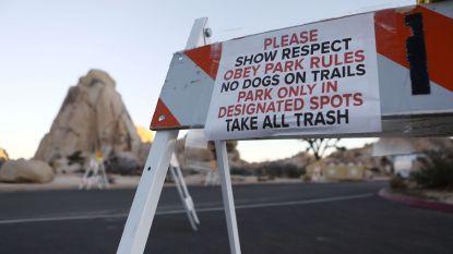 Chaos en risico zijn te groot: Joshua Tree National Park gaat dan toch dicht door shutdown