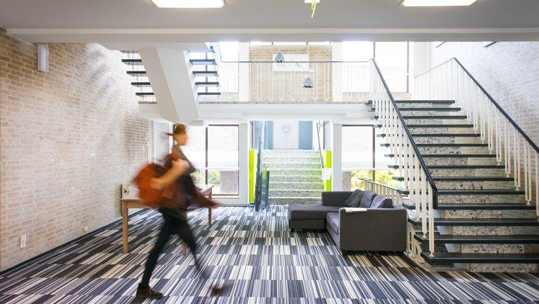 ZZP'er in een gebouw voor zelfstandigen en kleine bedrijven in Den Haag. Beeld anp