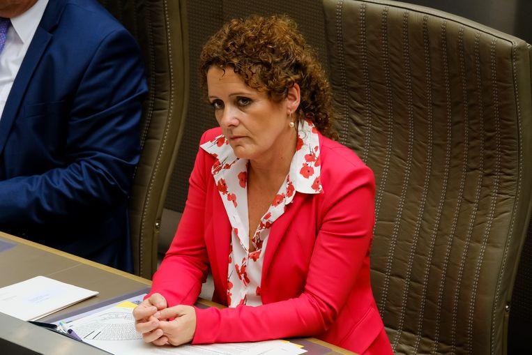 Ontslagnemend Vlaams minister van Energie Lydia Peeters benadrukt dat de uitrol van de digitale meter niet in het gedrang komt.