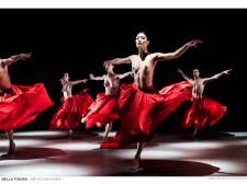 Exclusieve balletvoorstelling is ode aan Jirí Kylián die het Nederlands ballet liet schitteren