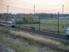 Ontsnapt paard legt treinverkeer tussen Dordrecht en Lage Zwaluwe stil