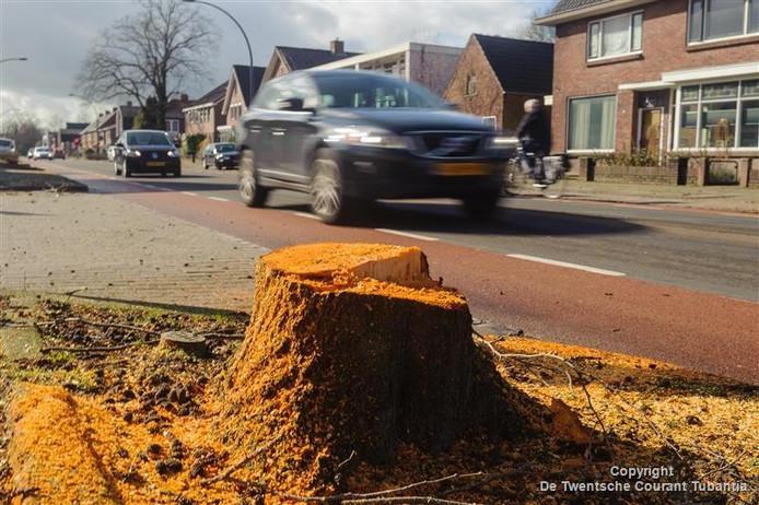 De bomen werden in maart al gekapt, zaterdag beginnen de werkzaamheden.