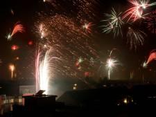 Dierenpartij boekt succes: parken in Gouda vrij van vuurwerk
