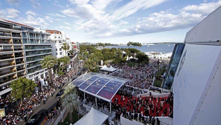 De rode loper van het festivalpaleis in Cannes. Beeld null