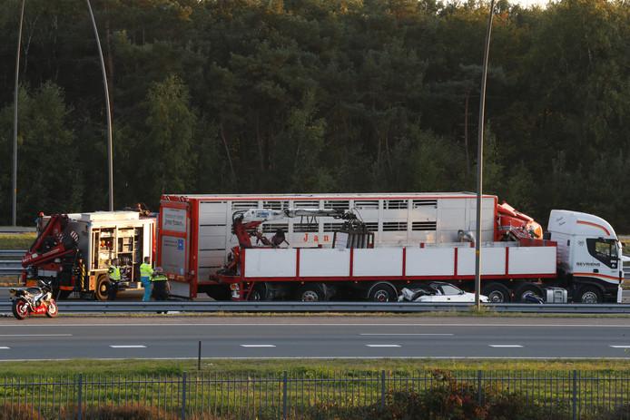 Een truck met varkens botste oktober vorig jaar achterop een file en duwde een personenwagen tegen een voorliggende vrachtwagen. De bestuurder overleefde het niet.