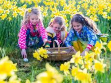 De Goede week met Witte Donderdag, Goede Vrijdag en Pasen, maar wat vieren we?