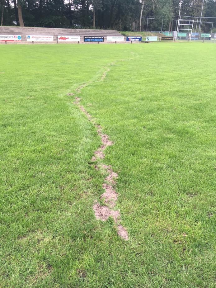 Een mol heeft een spoor van vernieling achtergelaten op het hoofdveld van voetbalvereniging Victoria Boys.