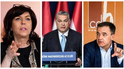 Meningen binnen cdH verdeeld over ban voor Orbán